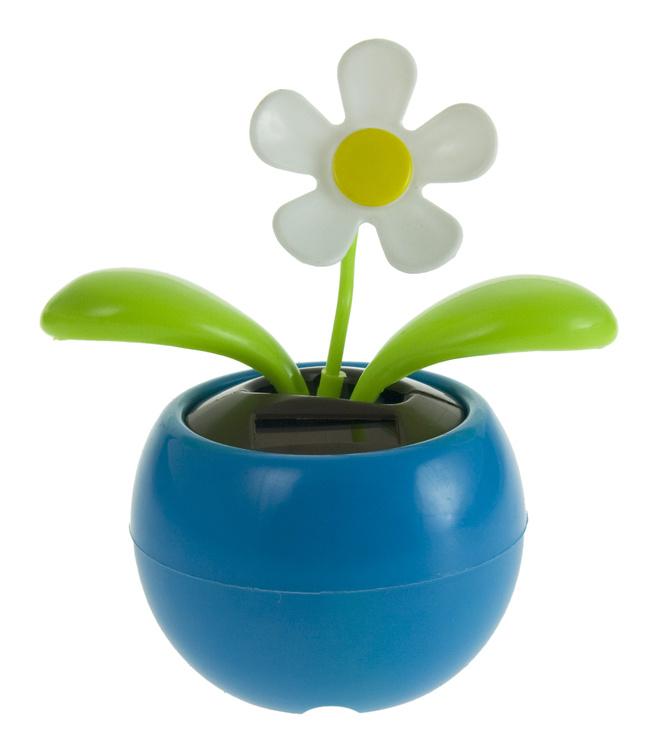 Solar Blume