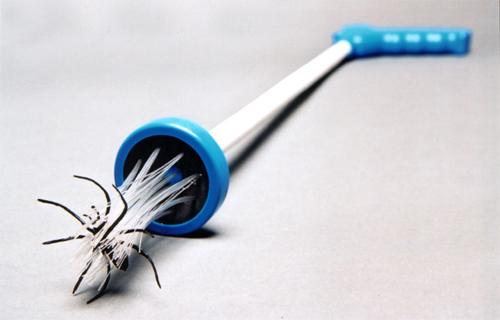Spinnenfänger für Arachnophoben – ein nützlicher Alltagshelfer