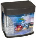 Aquarium mit USB-Anschluss – Abwechslung auf dem Schreibtisch